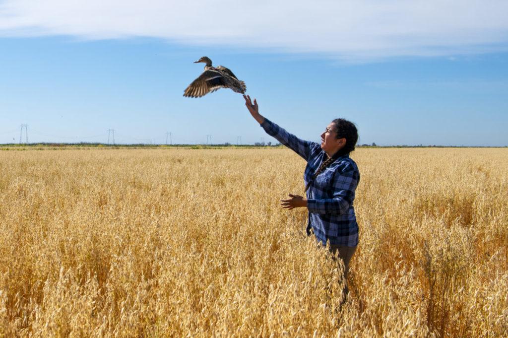 Marina Guzman releasing a bird into the air. Photo credit: Holly A. Heyser